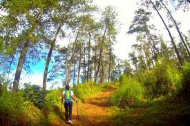 Berpetualang Menyusuri Taman Hutan Jaya Giri Lembang