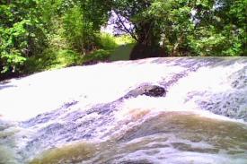 Riam Air Merah, Sungai Nil-nya Kalimantan Barat